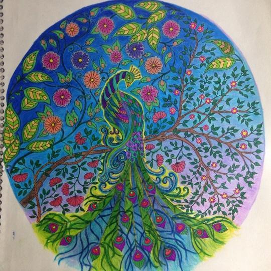 ǧ�密花园蝴蝶和花作品 Iu秘密花园百度云 ǧ�密花园涂色本模板 ɟ�剧秘密花园百度云 ǧ�密花园涂色本范本 ƈ�的秘密花园涂色范本