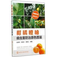 柑橘橙柚病虫害防治原色图鉴