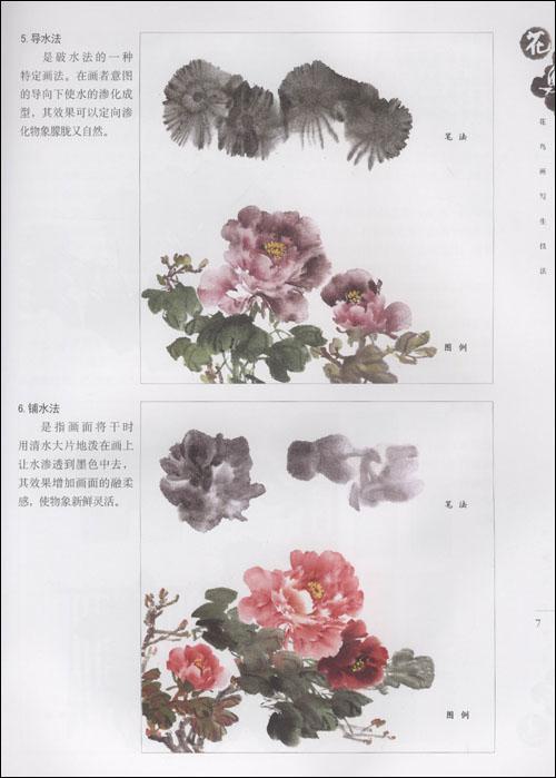 花鸟画构图法