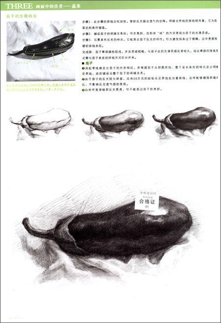 初学者素描画步骤图青椒