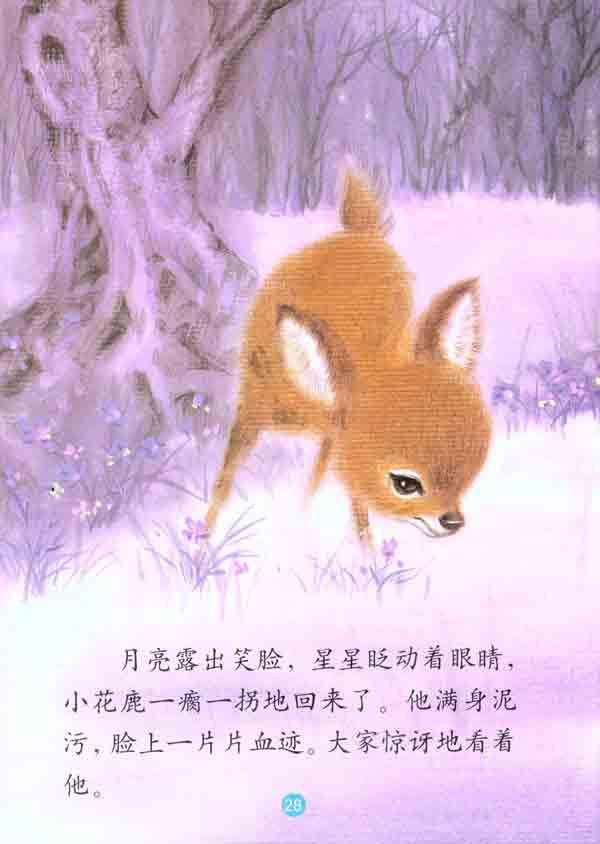 欢乐的动物世界有爱心的小花鹿