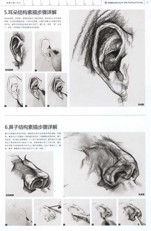 人物头像结构素描范本-蒋晓玲