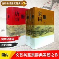 唐诗宋词鉴赏辞典 全3册