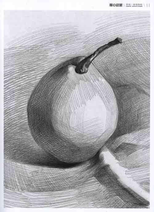 苹果和梨的素描连接线图片