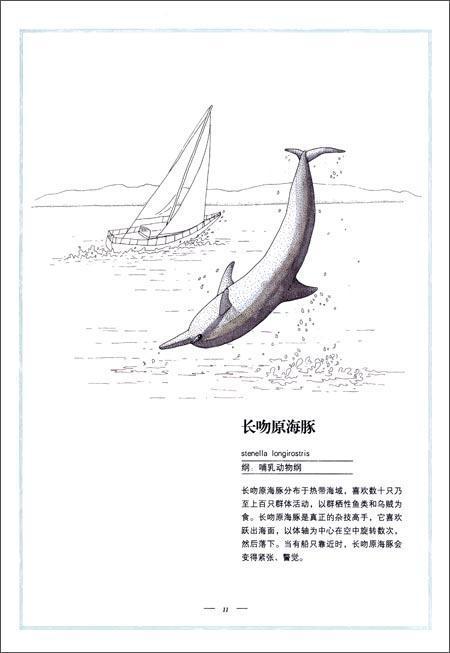 绘制了100多种海洋生物