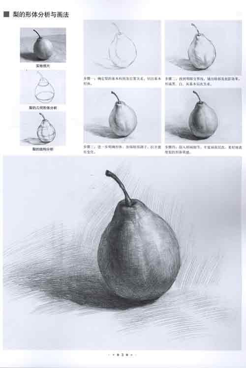 单个素描静物 名家技法临摹范本 美术特色班教学系列