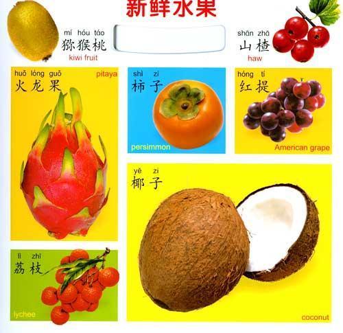 00 目录 新鲜蔬菜 美味食物 常见物品 新鲜水果 交通工具 人物·职业图片