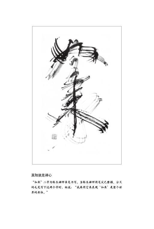 禅者的初心-(日)铃木俊隆