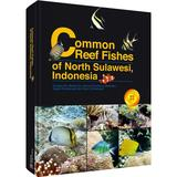 Common Reef Fishes of North Sulawesi Indonesia
