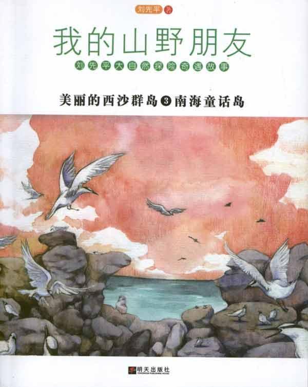 美丽的西沙群岛3,小说