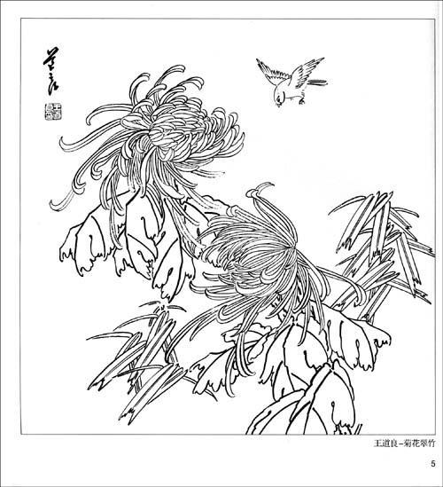 实用白描画稿-花鸟-王道良等绘-绘画作品-文轩网