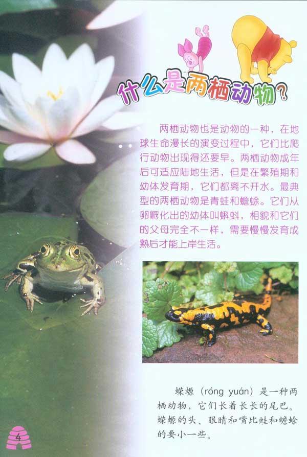动物百科:两栖和爬行》是一套适合幼儿认知汉字的