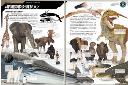 鲨鱼 动物生活 长寿的动物 奇异的动物 牙齿,长牙和角 大型猫科动物