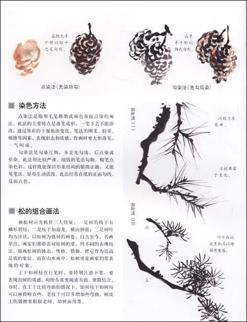 松树的画法-刘彦明-技法教程-文轩网
