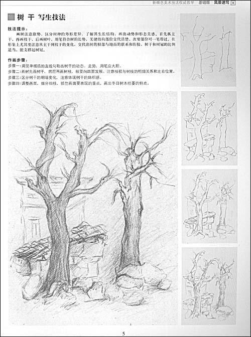 风景速写 树的画法 风景速写中柳树的画法图片