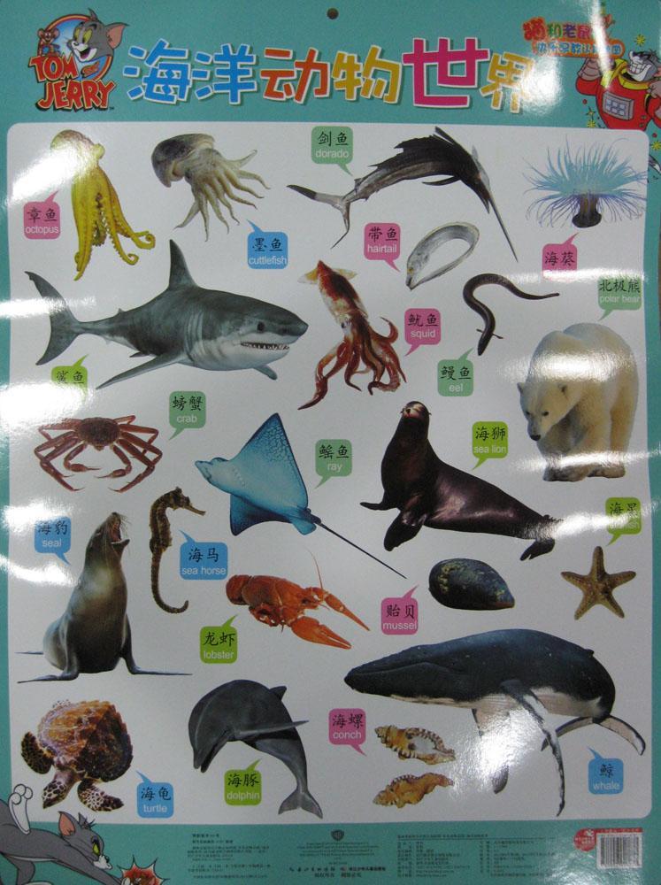 《常见动物乐园/海洋动物世界》