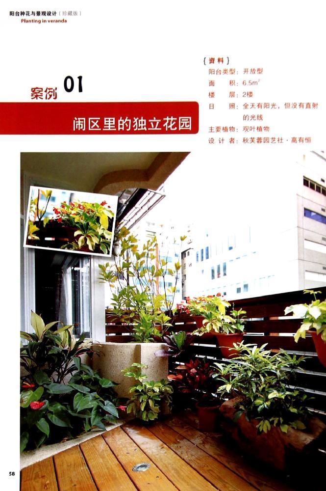阳台种花与景观设计--图书-文轩网
