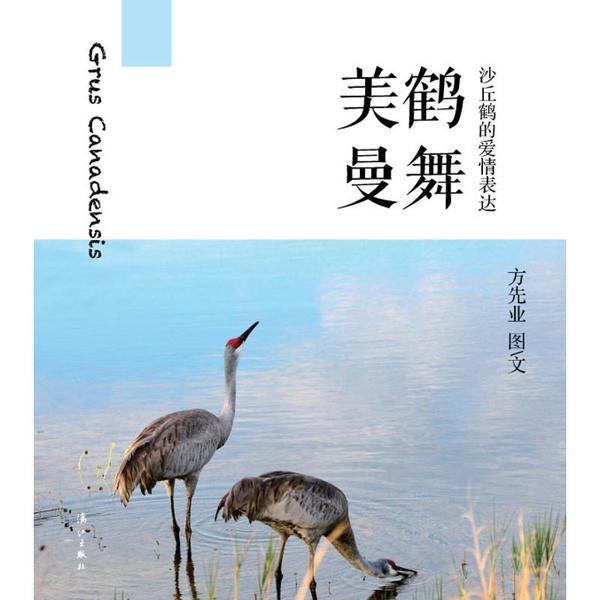 美鹤国际助孕张青