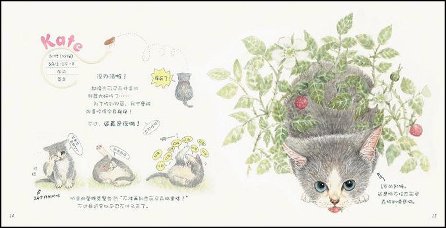"""除了可爱讨喜的大小图画,作者莫莉蓟野号称具有""""会说猫语""""的功能,也"""