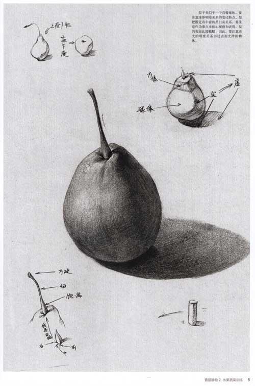 素描画画水果图片图片