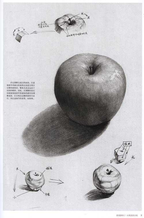 入门静物素描图片水果,静物素描 罐子 水果,素描静物水果图-罐子的