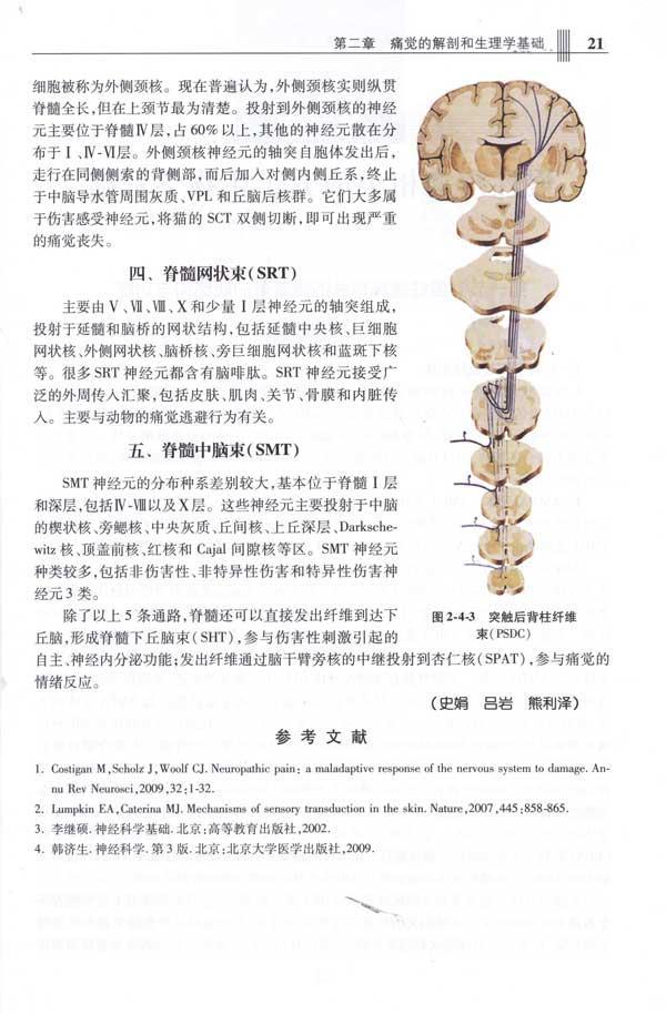 附录8疼痛数字评价量表