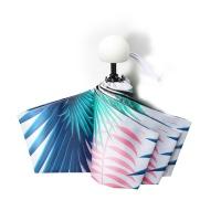 口袋元素胶囊太阳伞遮阳防紫外线女折叠晴雨两用防晒迷你五折雨伞