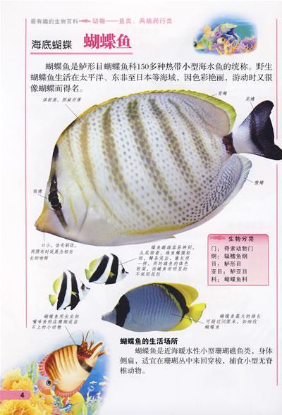 鱼类,两栖爬行类/最有趣的生物百科动物