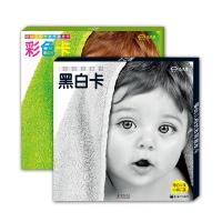 婴幼儿视觉发育激发卡套装(共两册)