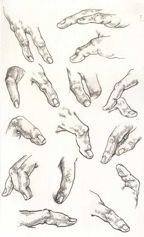 线描手掌动物画