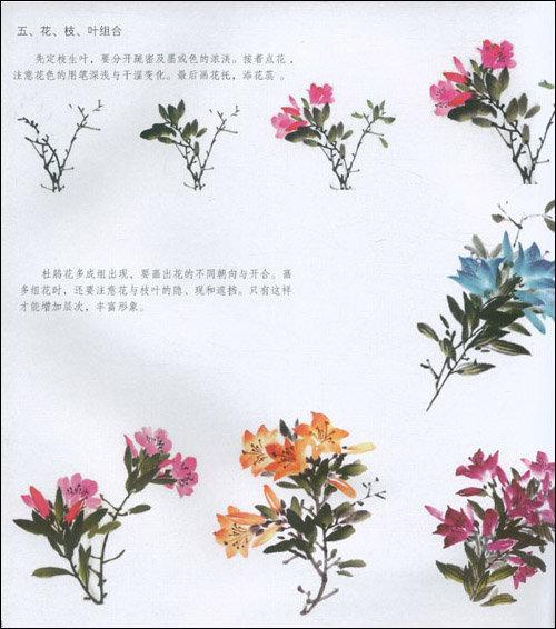 中国画技法:杜鹃百合