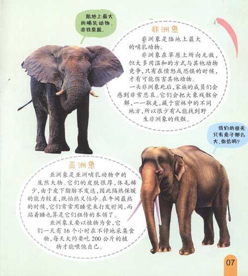近代灭绝的30种动物[组图]