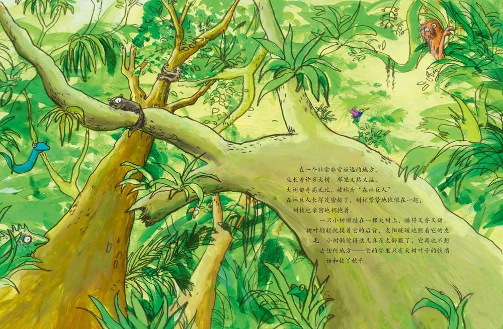 小树懒和它的大树(精装绘本)