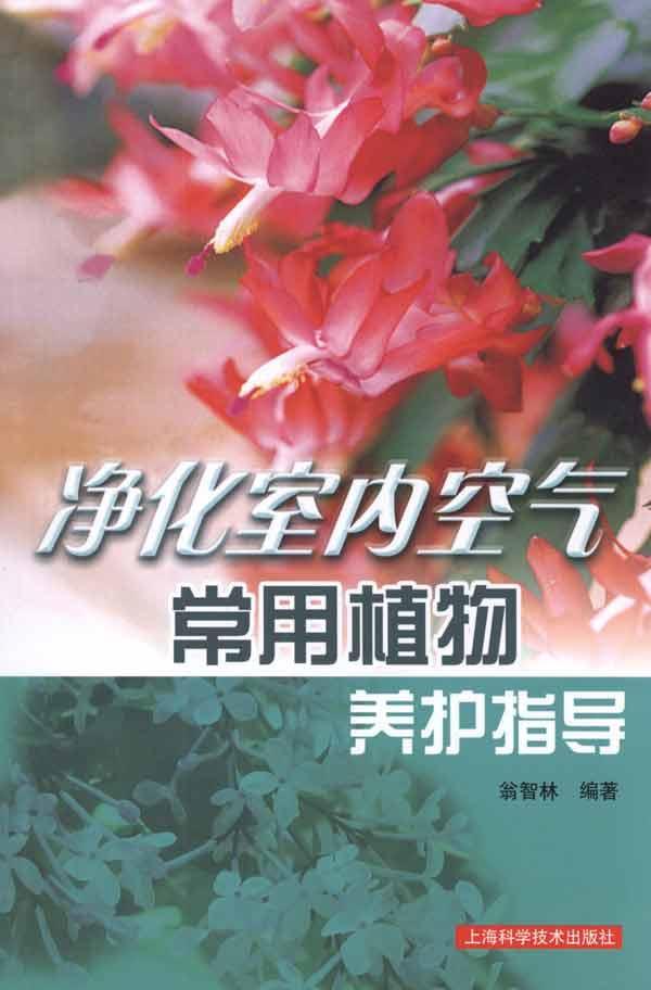 正版书籍/净化室内空气常用植物养护指导/翁智林